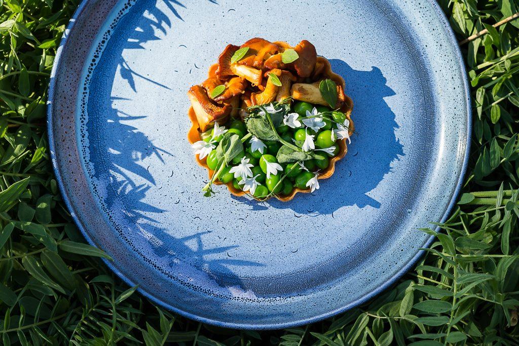 Hotelli Punkaharju sieniannos sinisellä lautasella EAT
